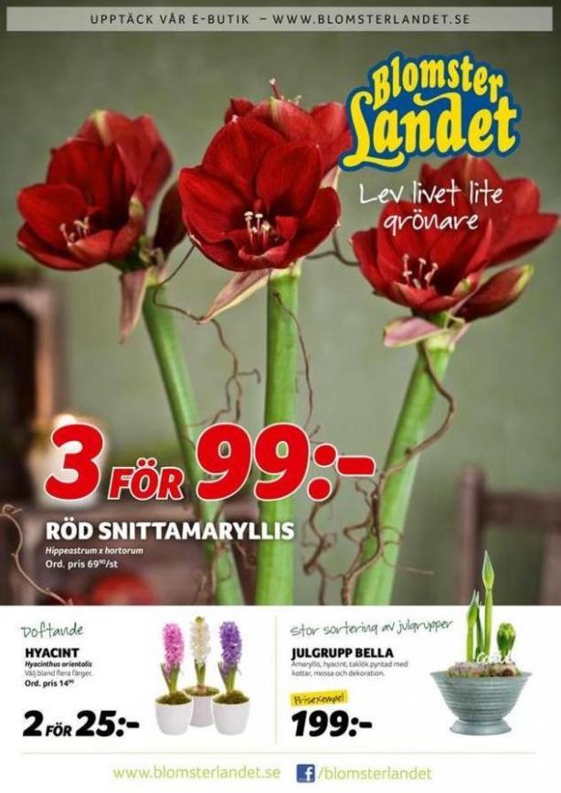 Blomsterlandet Erbjudande Aktuell Kampanj . Blomsterlandet (2019-12-26-2019-12-26)