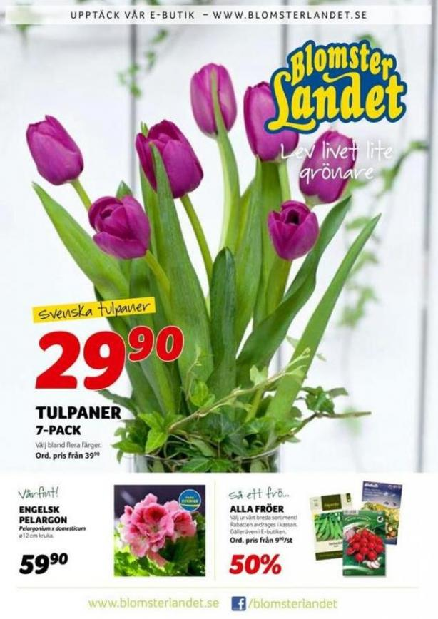 Blomsterlandet Erbjudande Aktuell Kampanj . Blomsterlandet (2020-01-26-2020-01-26)