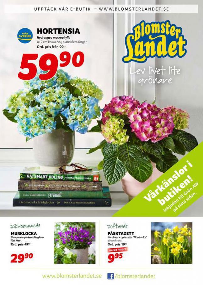 Blomsterlandet Erbjudande Aktuell Kampanj . Blomsterlandet (2020-03-01-2020-03-01)