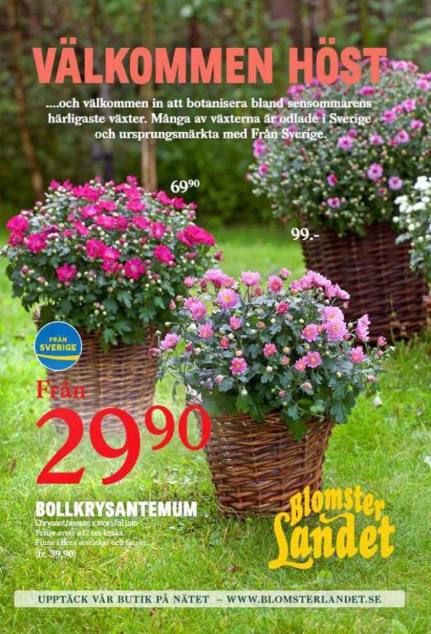 Blomsterlandet Erbjudande Välkommen Höst . Blomsterlandet (2020-08-30-2020-08-30)