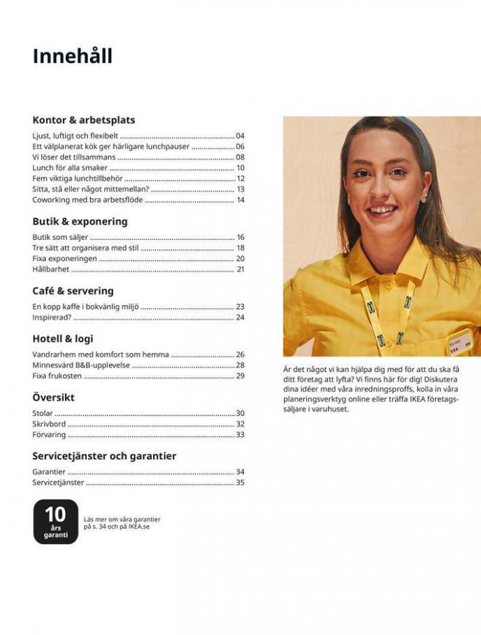 Inspiration till företaget 2021 . Page 3