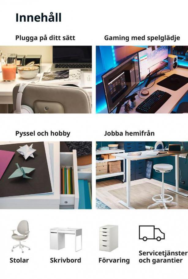 Arbete, studier och hobby 2021 . Page 3