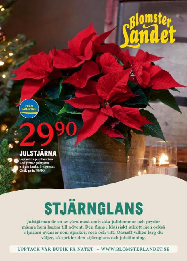 Blomsterlandet Erbjudande Aktuell Kampanj . Blomsterlandet (2020-12-13-2020-12-13)