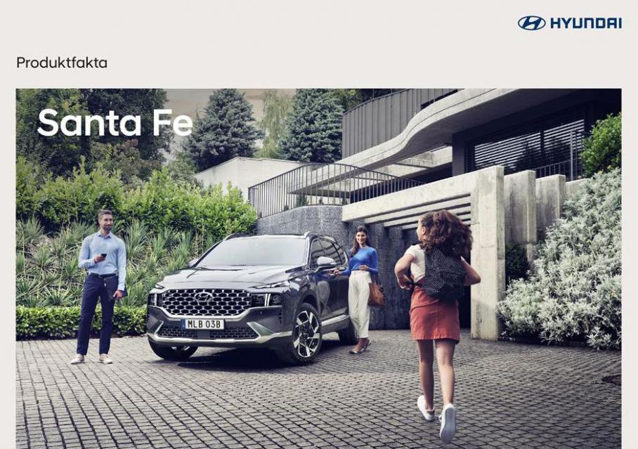 Hyundai Santa Fe . Hyundai (2021-12-31-2021-12-31)