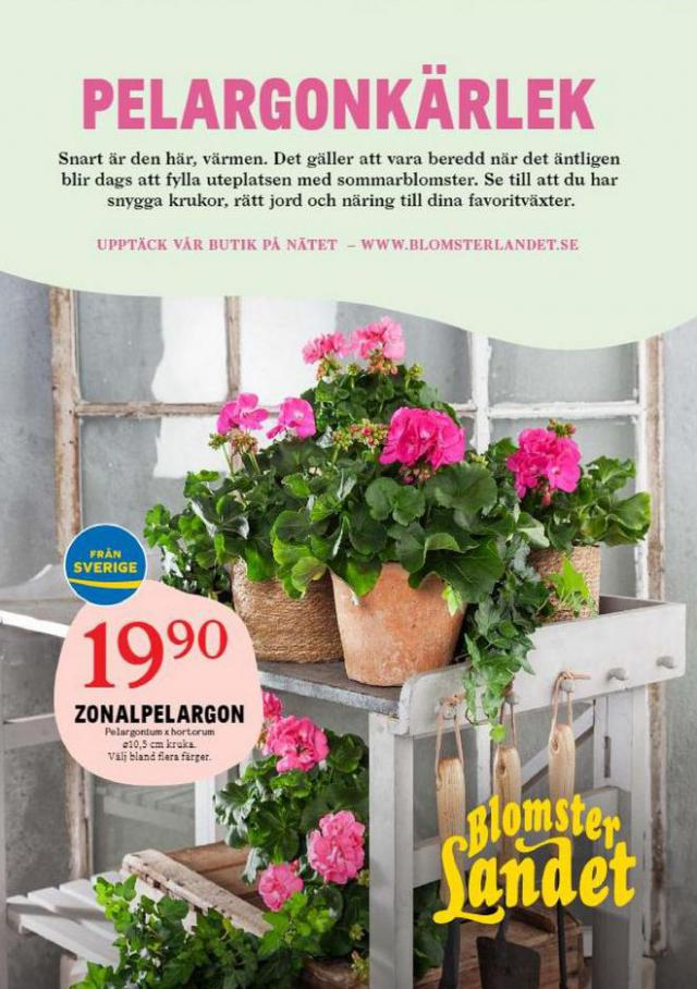 Blomsterlandet Erbjudande Aktuell  . Blomsterlandet (2021-04-18-2021-04-18)