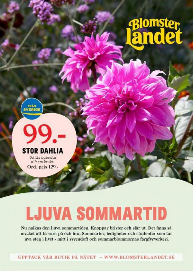 Blomsterlandet Erbjudande Aktuell. Blomsterlandet (2021-06-13-2021-06-13)