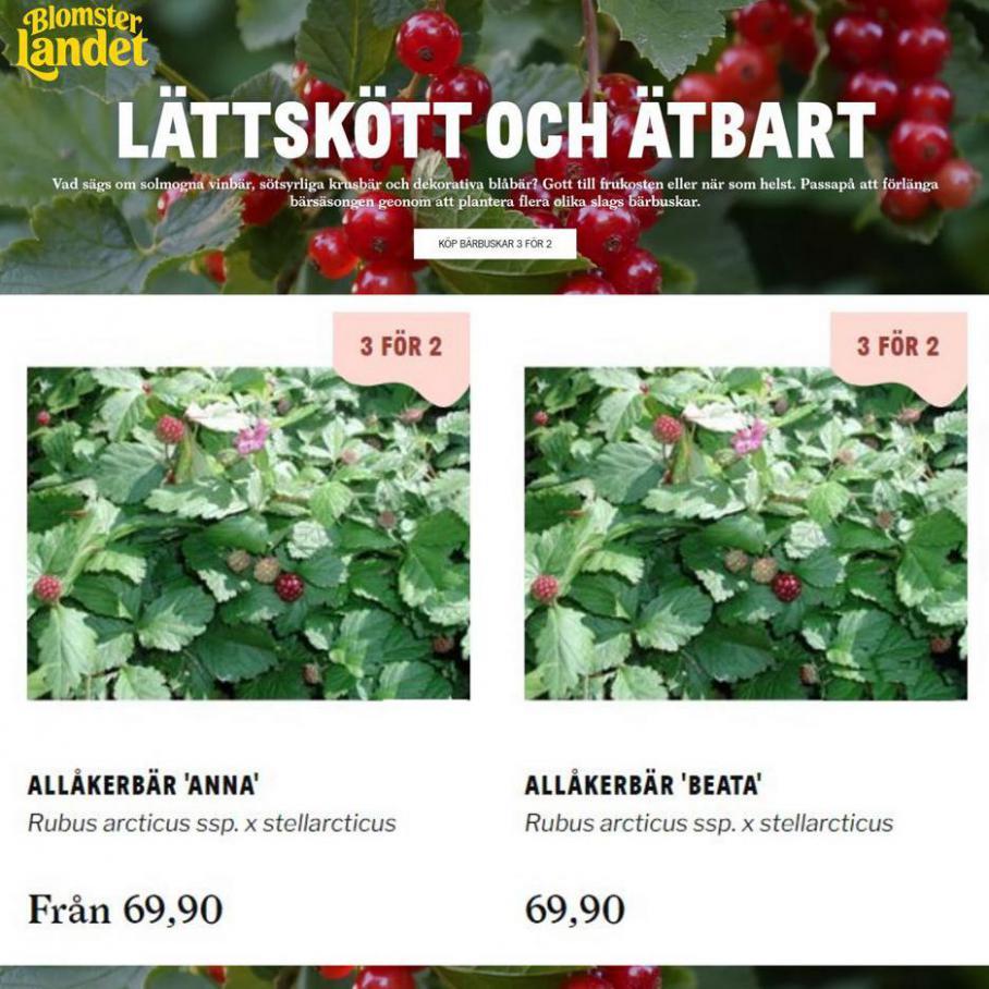 LÄTTSKÖTT OCH ÄTBART 3 for 2. Blomsterlandet (2021-08-02-2021-08-02)