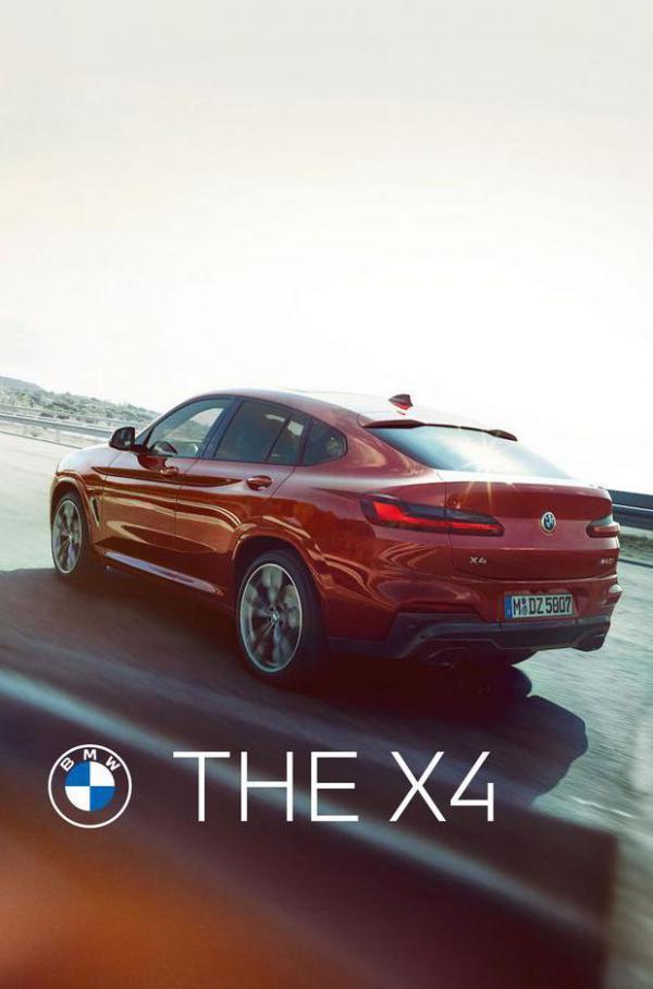 BMW X4. BMW (2022-01-01-2022-01-01)