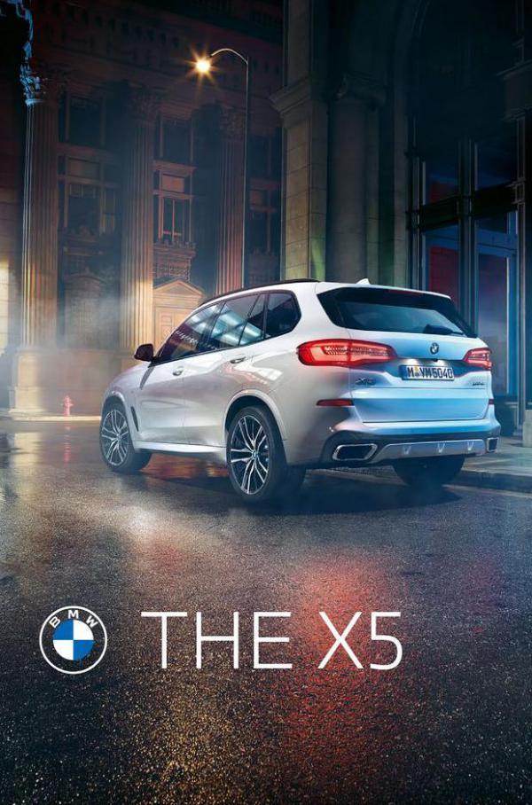 BMW X5. BMW (2022-01-01-2022-01-01)