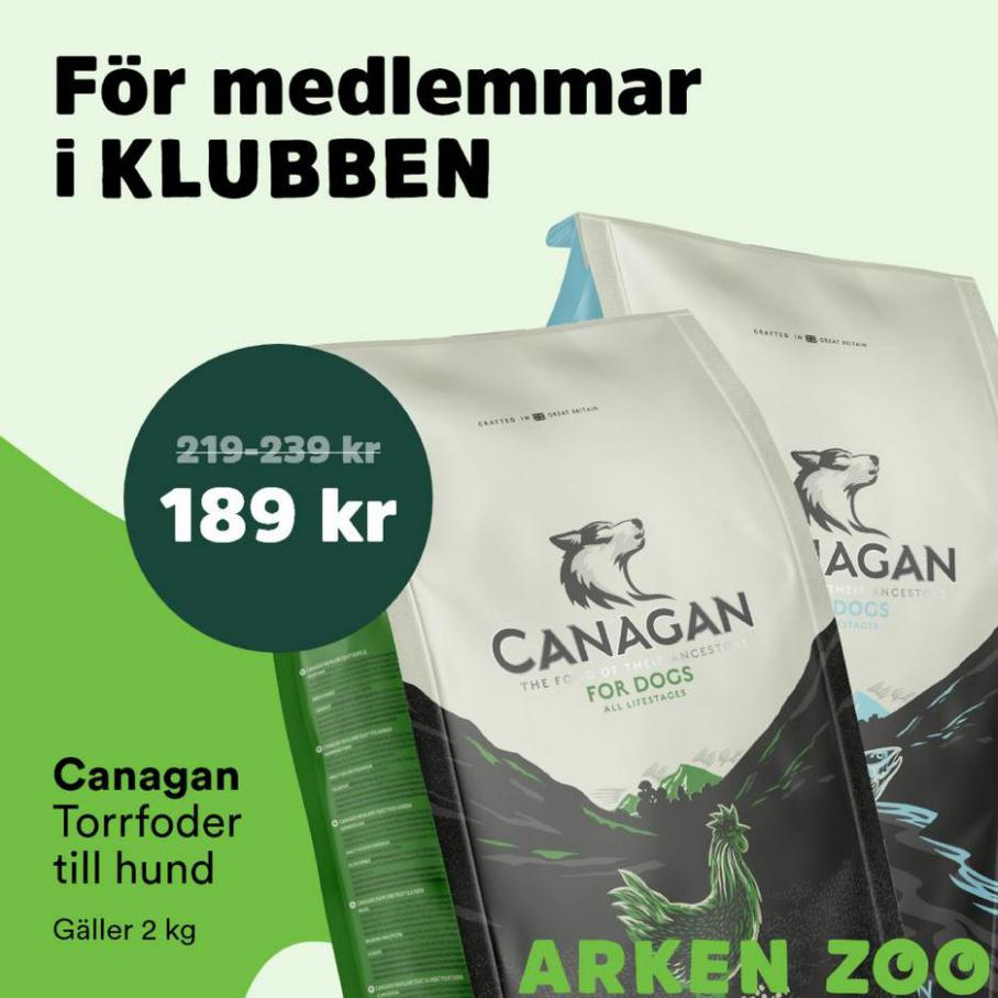 Erbjudande. Arken Zoo (2021-08-01-2021-08-01)