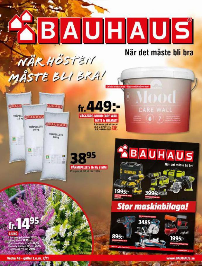 Bauhaus Erbjudande Aktuella Kampanjer. Bauhaus (2021-11-07-2021-11-07)